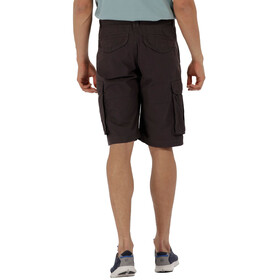 Regatta Shoreway II Shorts Men Iron